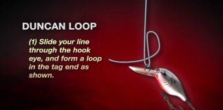 duncon loop